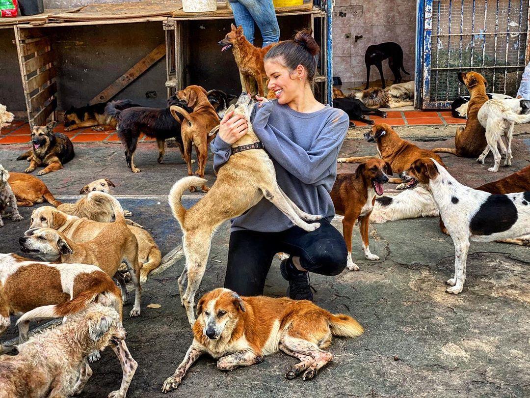 Marie-Claire-fundacion-perros
