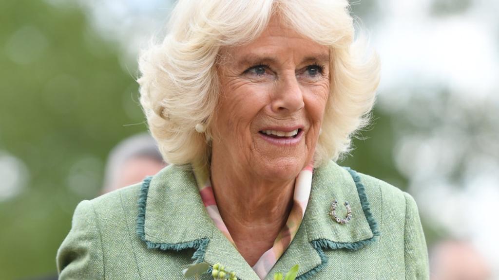 Duquesa de Cornwall - Cortesía