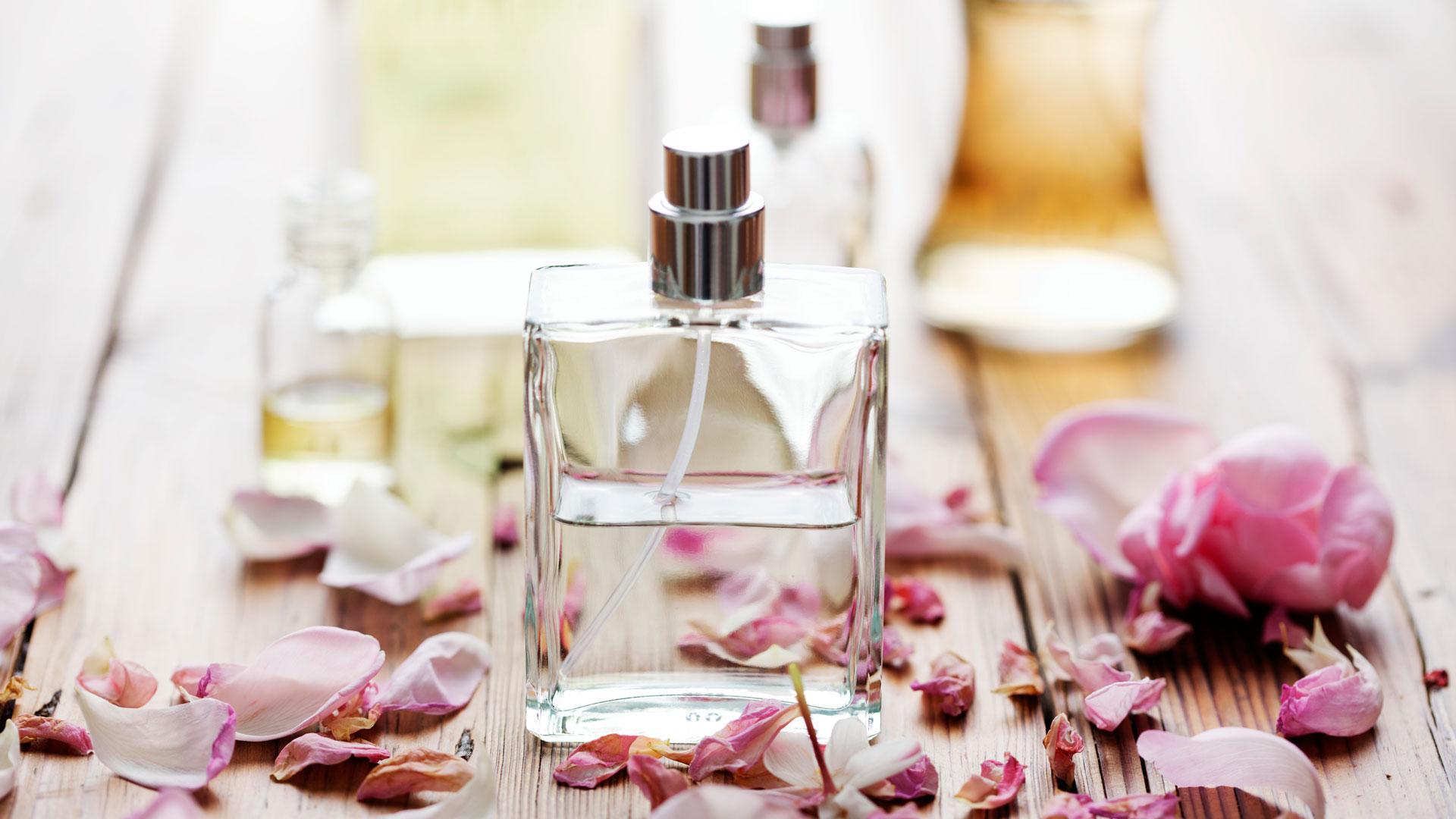 Perfume - Cortesía