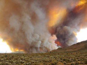 Tornado de fuego en California - Cortesía