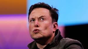 Musk - Cortesía