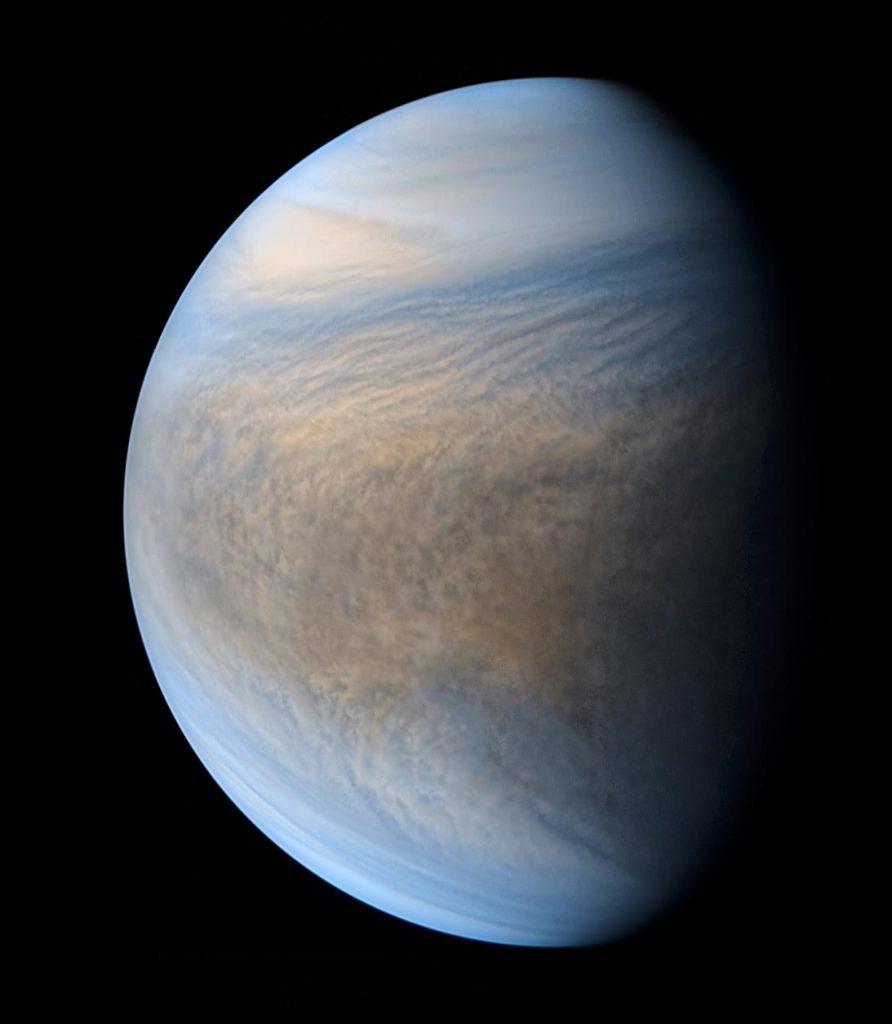 Venus - Cortesía