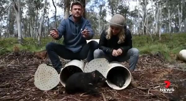 Hemsworth - Cortesía canal 7