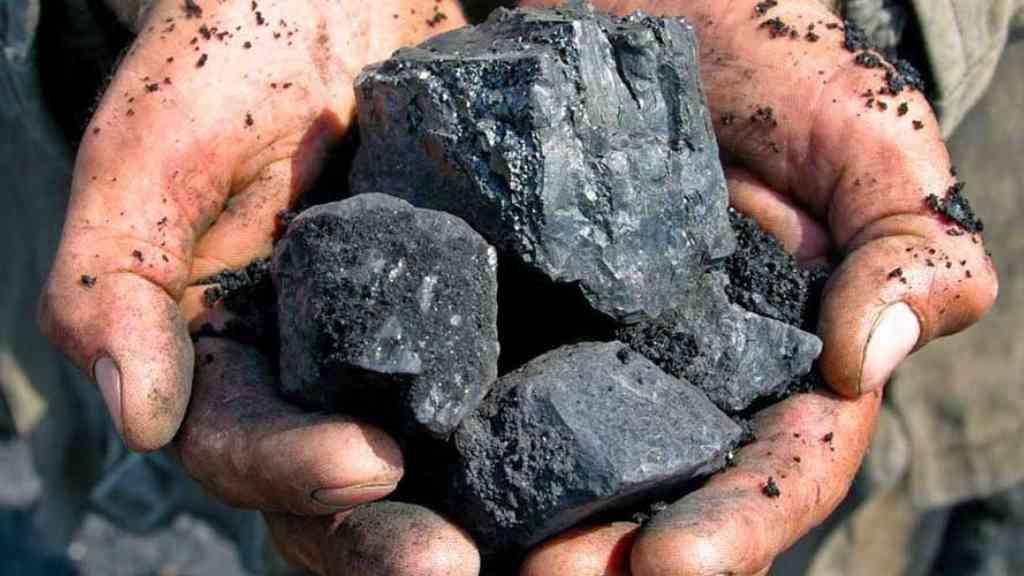 Carbón - Cortesía