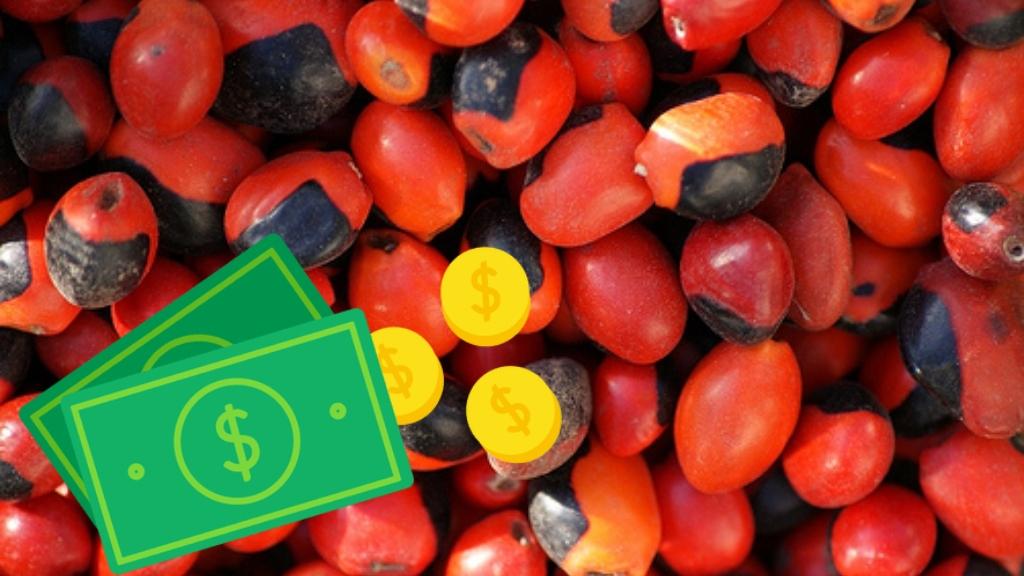 Los granos de peonía atraen el dinero - Cortesía